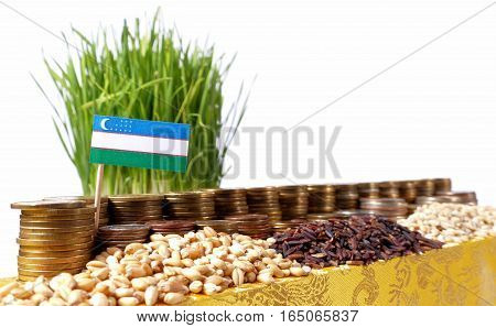 Uzbekistan Flag Waving With Stack Of Money Coins And Piles Of Wheat And Rice Seeds