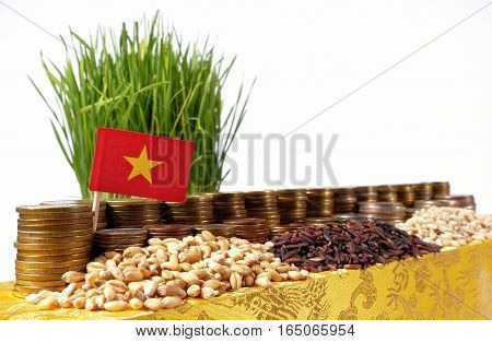 Vietnam Flag Waving With Stack Of Money Coins And Piles Of Wheat And Rice Seeds