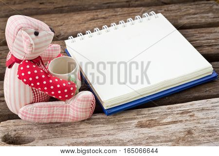 Bear Read The Book