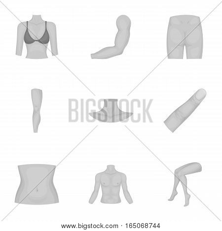 Part of body set icons in monochrome style. Big collection of part of body vector symbol stock