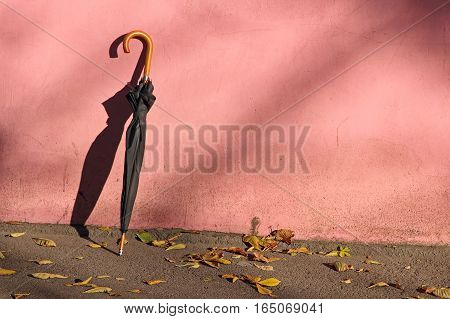 The Photo of Black Umbrella near pink wall.
