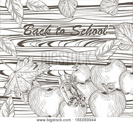Vector Back to school linear illustration of  scholar theme on textured wood board. Autumn Apples and maple leaves. Hand drawn sketch. Engraving technique style