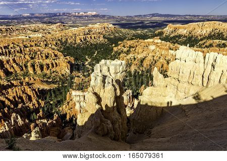 Hoodoo in Bryce Canyon National Park Utah