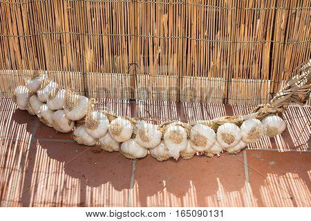 A Garlic Braid