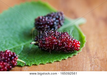 Fresh some Mulberries on a wooden board