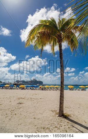 Caribbean Beach of St Maarin with Tourists and Palm Tree
