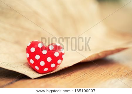 Red Heart On Dry Leaf. Valentine's Day Background