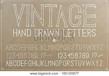 Vintage hand drawn alphabet on plywood background. Vector font. Sillhouettes and outlines