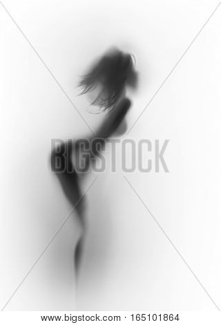 Beautiful and sexy long hair slender woman body silhouette.