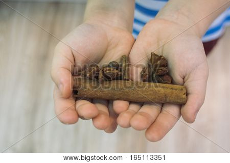 The child holds in his hands a stick of cinnamon, allspice, ginger, star anise, nutmeg, cardamom, cloves