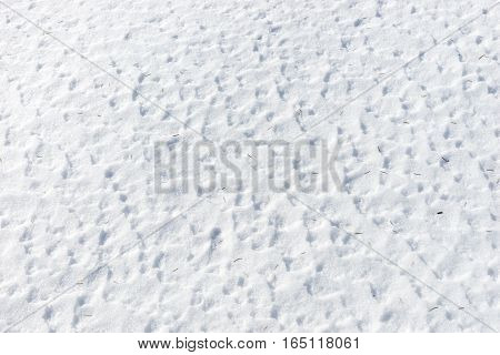 Close up of snow surface texture, winter background