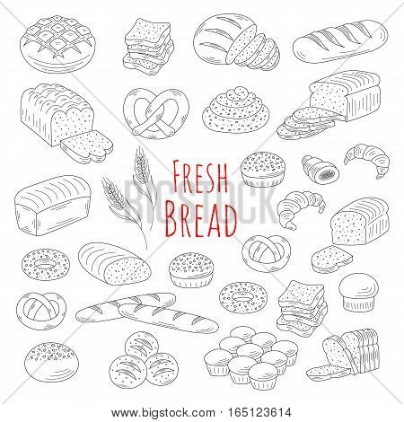 Bakery fresh bread collection with various sorts of bread, croissant, pretzel, french baguette, rolls, bagels and buns isolated on white background, hand drawn doodle style vector illustration.