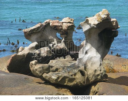 Unusual Shaped Rock In Fore Ground, With Back Ground Sea 08a