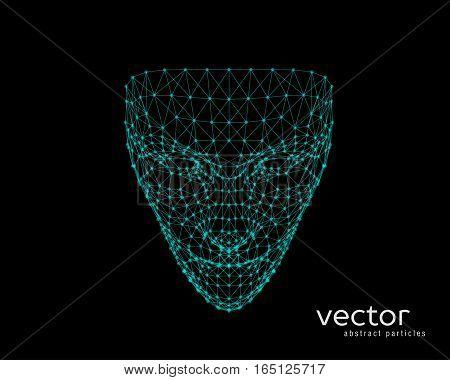 Vector Illustration Of Human Face