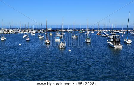 Dozens of boats are anchored at a marina in Monterey, California.