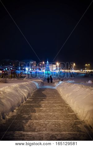 walks around the city: the main fir-tree in the downtown, a holiday new year, Christmas, winter, rest