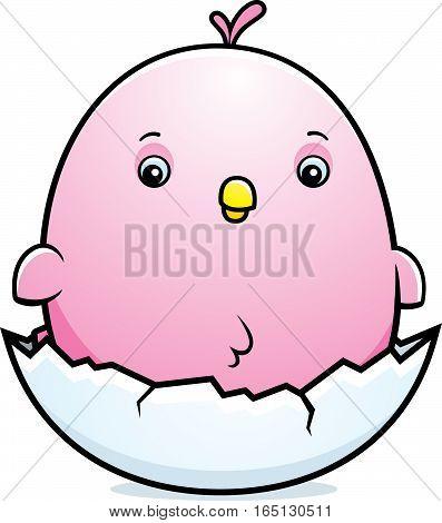 Cartoon Baby Pink Parakeet Egg