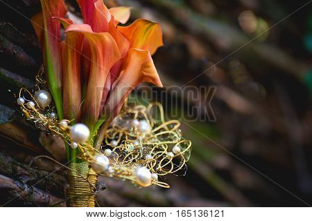 orange calla lilies close up on a background wicker wooden fence