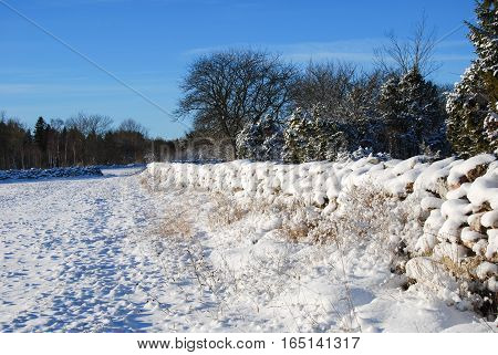 Snowy landscape with stone walls at the swedish island oland
