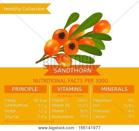 Sandthorn health benefits. Vector illustration with useful nutritional facts. Essential vitamins and minerals in healthy food. Medical, healthcare and dietory concept.