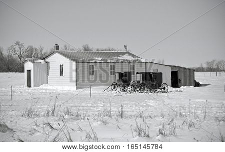 Amish buggies in front of a school house on a winters day