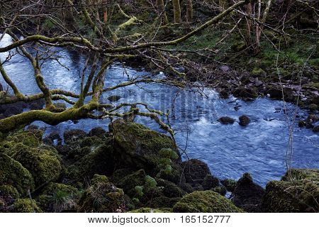 Icy Cold Blue Meltwater River Flowing Through Moss Covered Rocks and Trees