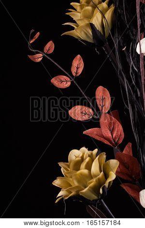 Flower arrangement with warm dark tones on a black background