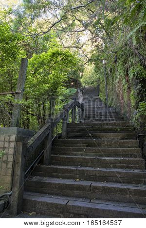 The Trails In Yang Ming University