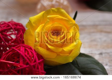 Greeting Card for Women's Day. Bright colors.