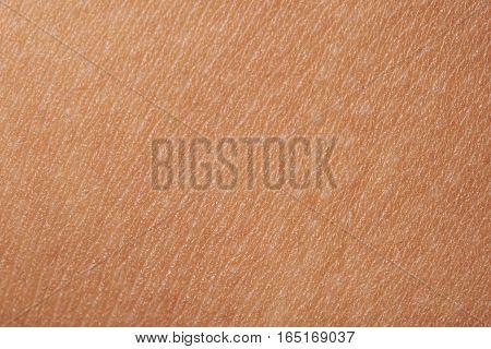 Macro of human skin with white dots. Human skin texture
