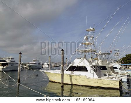 Sport fishing boats available of charter moored at Haulover Marina in southeast Florida.