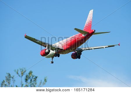 SAINT PETERSBURG, RUSSIA - AUGUST 24, 2016: Airbus A319-111 (VQ-BCP) of the airline Rossiya - Russian Airlines landing