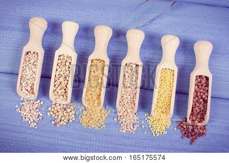 Vintage Photo, Various Groats On Wooden Spoons, Healthy Food And Nutrition