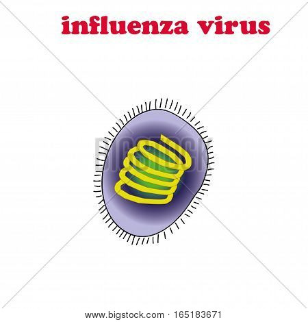 Influenza virus isolated on the white background.