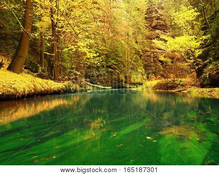 Autumn Nature. Mountain River With Low Level Of Water, Colorful Leaves