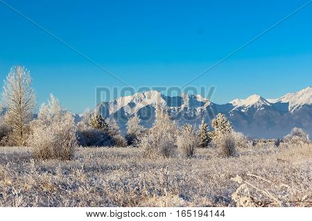 Winter frosty morning in a mountain valley