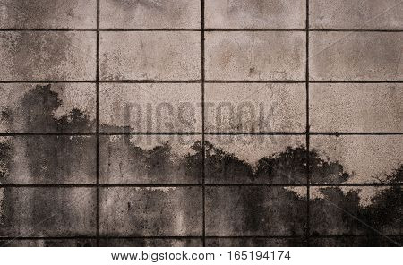 Stucco white wall background or texture. texture of a white wall. concrete wall. grey cement texture wallpaper. close up detail of textured rustic  wall. Background vintage