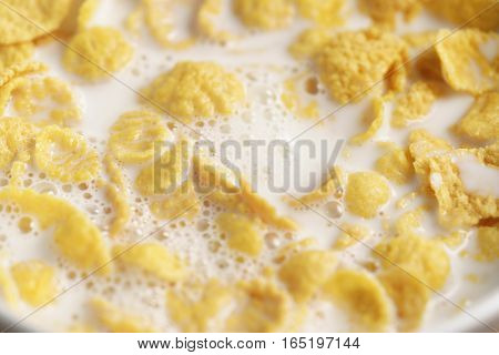 closeup of corn flakes with milk in bowl, healthy food background