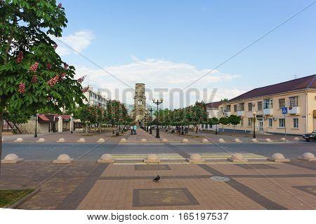 Chestnut Avenue on the Boulevard Chernyakhovsky the city of Novorossiysk