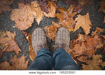 Feet of man in boots on autumn leaves.