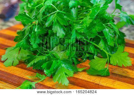 Organic Fresh Bunch Of Parsley Closeup On A Kitchen Tray
