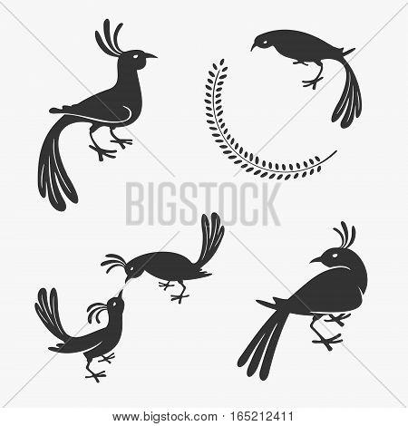 Vector Symbol of Exotic Birds eps 8 file format