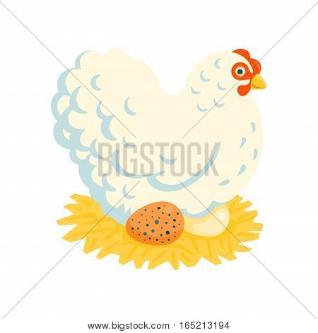 White fluffy broody chicken on a nest vector illustration cartoon style