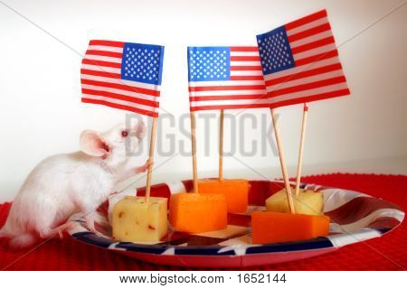 A white mouse holding a toothpick flag stuck into a cheese square. poster