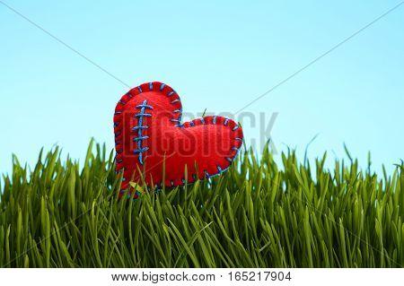 Red Felt Heat In Fresh Green Grass Over Blue Sky