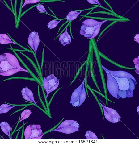 Beautiful spring seamless pattern with crocuses.The flowers of saffron on a dark blue background.Vector illustration.Print for gift wrapping, fabric, paper, postcards and website design.
