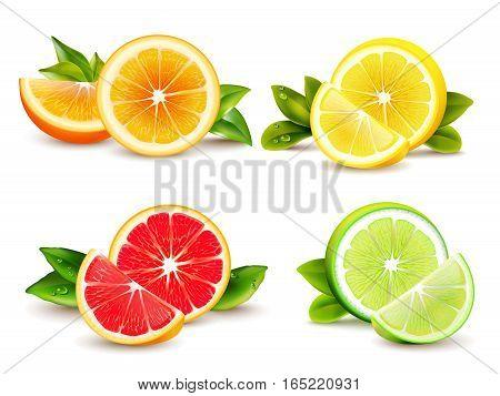 Citrus fruits halves and quarter wedges 4 realistic icons square with orange grapefruit lemon isolated vector illustration