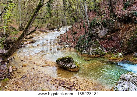 landscape with small mountain river in Crimea