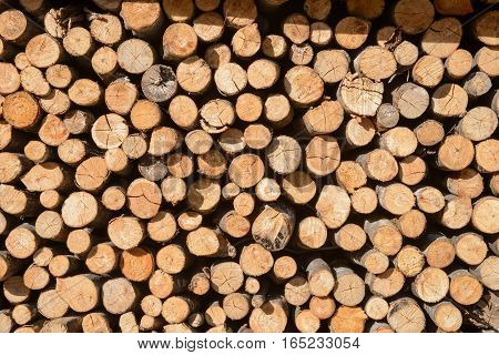 Arranged Firewood stack, background, texture, wood - stock photo