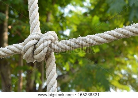 Rope knot line tied together with nature background,as a symbol for trust, teamwork or collaboration